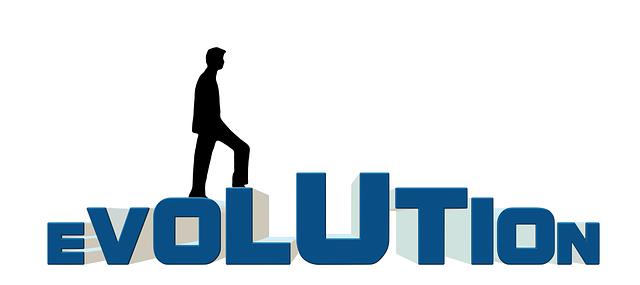 reinsurance market evolution