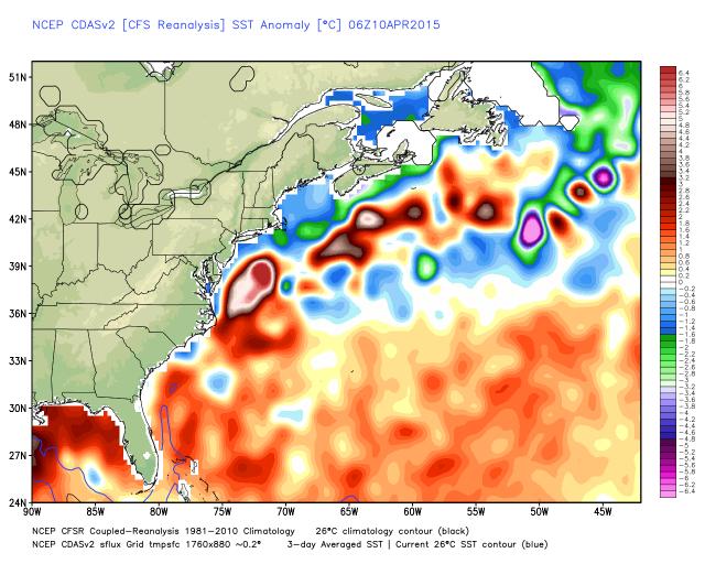 U.S. east coast sea surface temperature anomalies