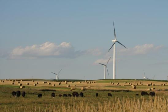 Wind farm image