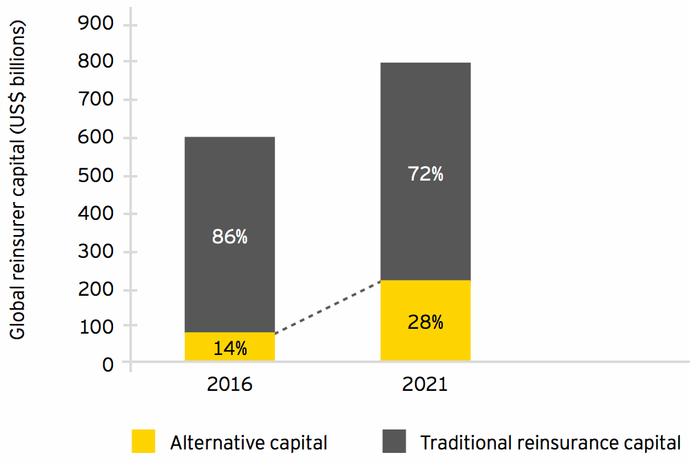 Projected development of (re)insurance capital structure by 2021 (conservative scenario)