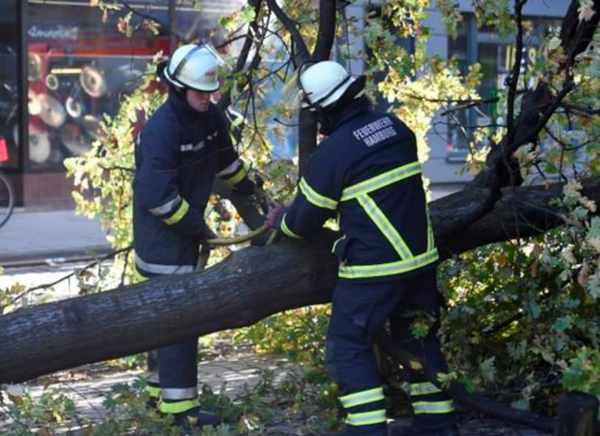 Storm Herwart losses (image via Reuters)