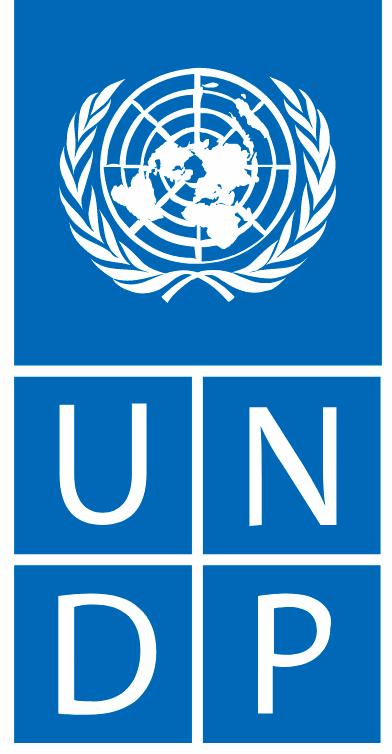 UNDP logo