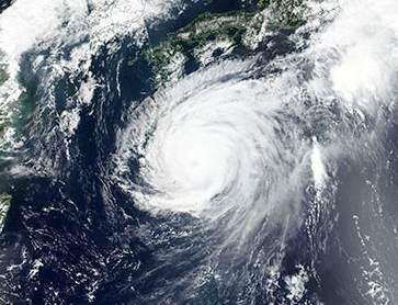 Typhoon Jebi