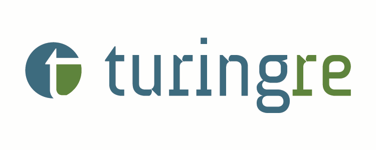 Turing Re Ltd. logo